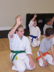 Wesley Chapel/Zephyrhills Karate School Focuses on Self Discipline to Help Children Become More Successful