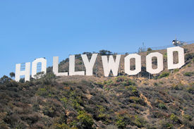 Appeal filed in Hollywood Internet piracy case
