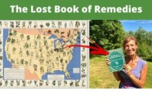 Photo of Book Of Remedies Review: The Truth or Scam to Survival? – Press Release